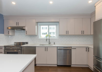 3D construction kitchen blue renovations langley-min